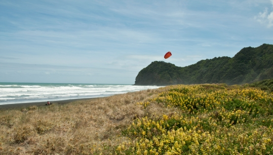 kiting in Piha