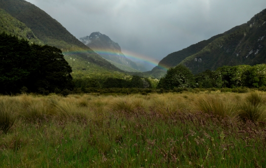 camping place rainbow:)