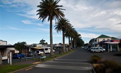 """Main road - """"Palm colonnade"""" II."""