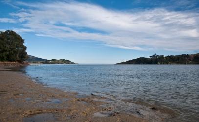 Raglan coastline _ Aroaro Bay III.