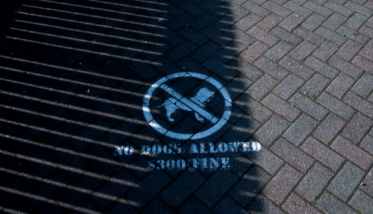 No dogs in city centre